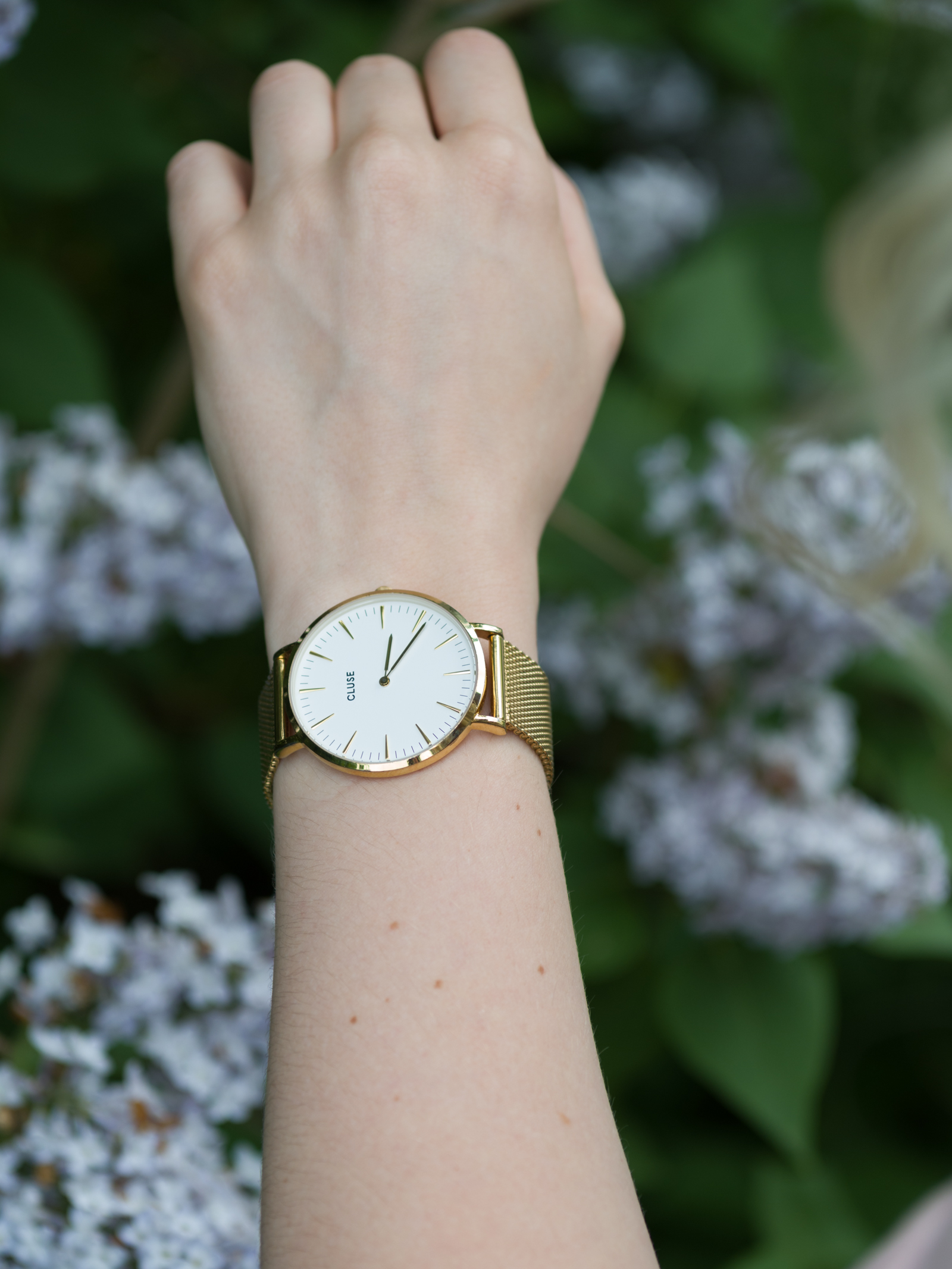 Cluse Uhr